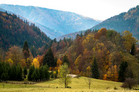 Leaves changing colors along a mountain pass in Slovokia